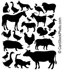 vector silhouettes of animals living on the farm on a white background