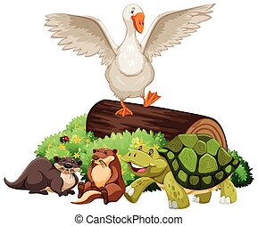 Animals on the wooden log