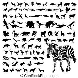 Animals - Vector illustration of animals silhouettes