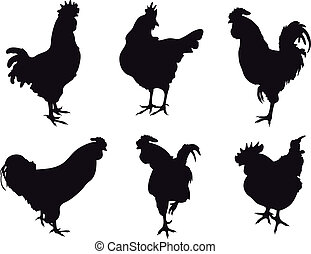 Animals vectors - Set of cockerel vectors. To see similar, ...