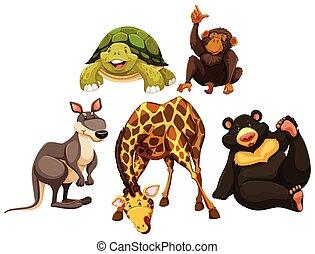 Different wild animals together - photo#50