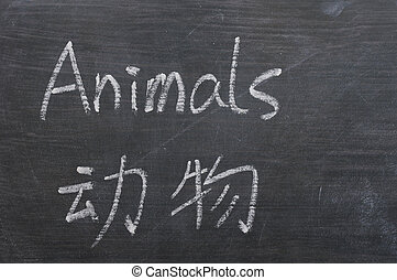Animals - word written on a smudged blackboard