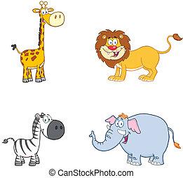 animals.collection, dzsungel