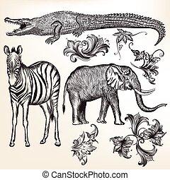 animals.eps, redemoinhos, vetorial, cobrança