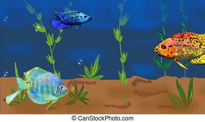 Animated aquarium with colorful tropical fish and plants, rising air bubbles. Seamless loopable video animation