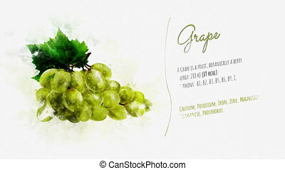 On white paper appears Grape and the text is telling about the energy value and useful properties of its.