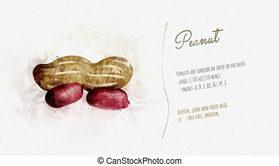 Animated card of Peanut with a list of its useful properties...