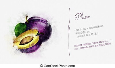 Animated card of Plum with a list of its useful properties -...