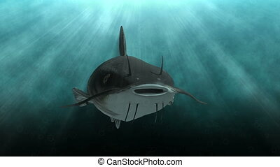 Animated catfish in clear blue water - An animation of a...