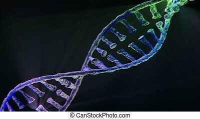 Animated DNA chain model. 3D