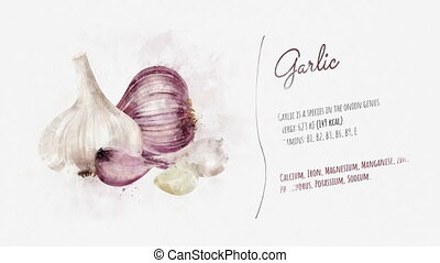 Animated information about the benefits of Garlic - On the...