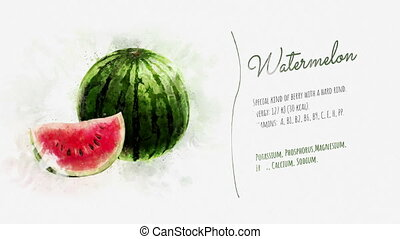 Animated information about the Watermelon - On the texture...