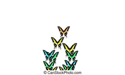 animated multicolored butterflies arrive, make up an inscription number 8