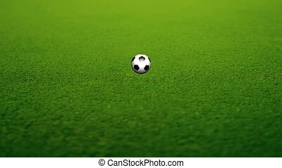 Animation of a Soccer Ball