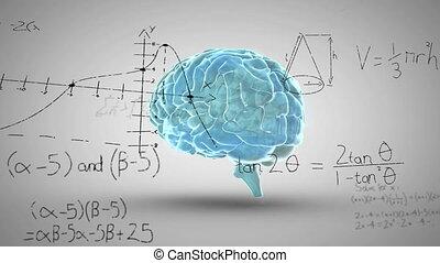 animatie, wetenschappelijk, hersenen, wiskundig