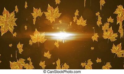 Animation bright autumn leaves