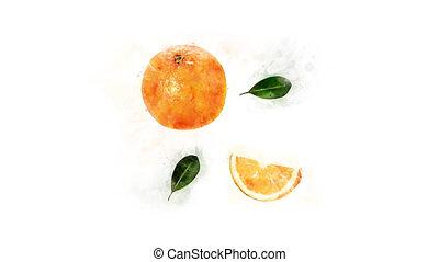 Animation drawing Orange - Animated Orange on a transparent...