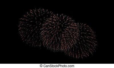 animation, feux artifice, ciel, multi, nuit, boucle, beau, coloré