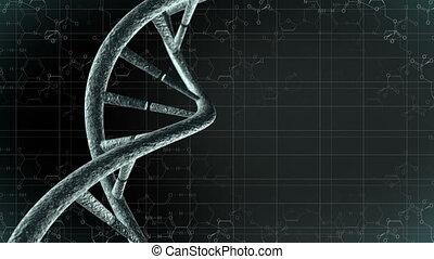 animation, génétique, adn, science, 4k, loop-able, arrière-plan.