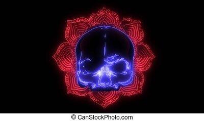 animation, humain, laser, vidéo, crâne