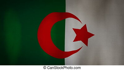Algeria flag fabric texture waving in the wind - animation -...