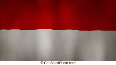 Indonesia flag fabric texture waving in the wind - animation...