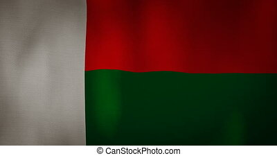 Madagascar flag fabric texture waving in the wind.