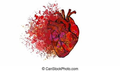animation of a heart with stain video