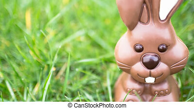 Animation of chocolate easter bunny on grass background