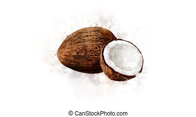 Animation of Coconut on the alpha channel - A hand-drawn...