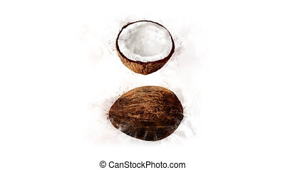 Animation of Coconut with spreading ink - Animation of the...