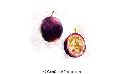 Animation of drawing Passionfruit and its parts - Animated...