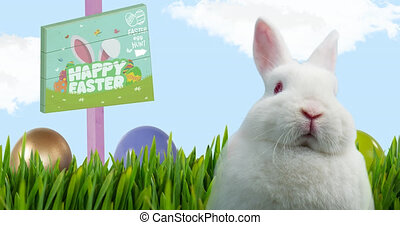Animation of easter bunny with happy easter and egg hunt text on board over blue sky. easter tradition and celebration concept digitally generated video.