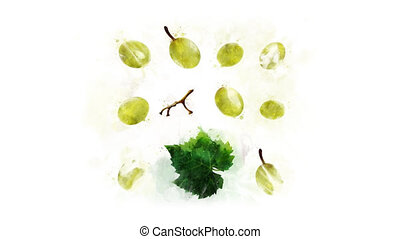 Animation of Grape with spreading ink - Animation of the...