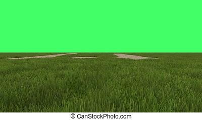 green field on green screen in background