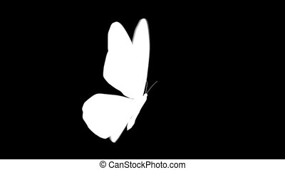Animation of movement of one white butterfly on a black background