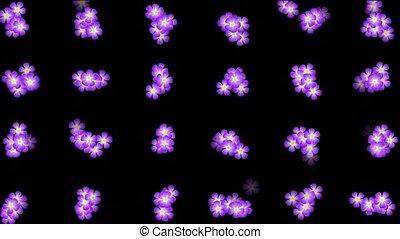 Animation of purple wild flower background,def