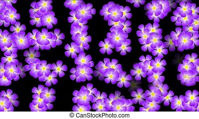 Animation of purple wild flower background,def