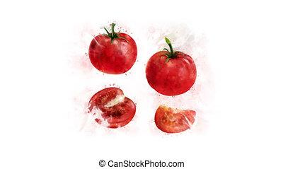Animation of Tomato for decoration - Tomato animation, made...