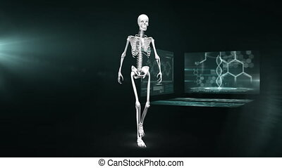 Animation of walking human skeleton with scientist screen