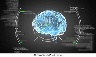 animation, tourner, bleu, humain, incandescent, fond, noir, cerveau, 3d