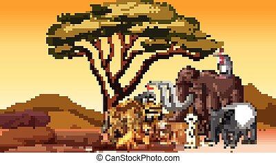 animaux, africaine, champ