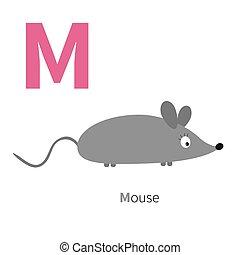 animaux, anglaise, gosses, souris, plat, lettre, alphabet., blanc, cartes, abc, education, conception, m, fond, isolé