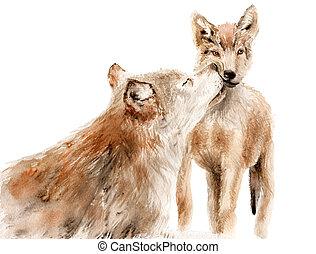 animaux, -, aquarelle, loup, rouges, gosse