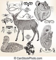 animaux, collection, vecteur