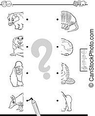 animaux colorent, moitiés, jeu, livre, allumette