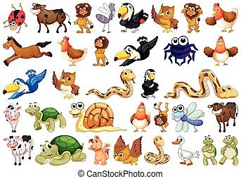 animaux, différent, ensemble