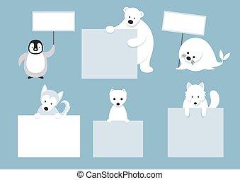 animaux, exposition, arctique, vide, caractères, signes