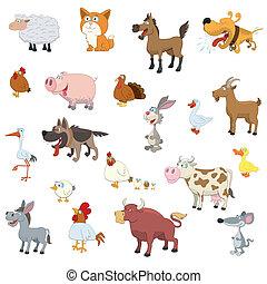 animaux ferme, ensemble