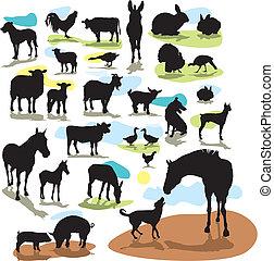 animaux ferme, silhouettes, vecteur, ensemble